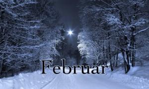 Mesečni horoskop za februar