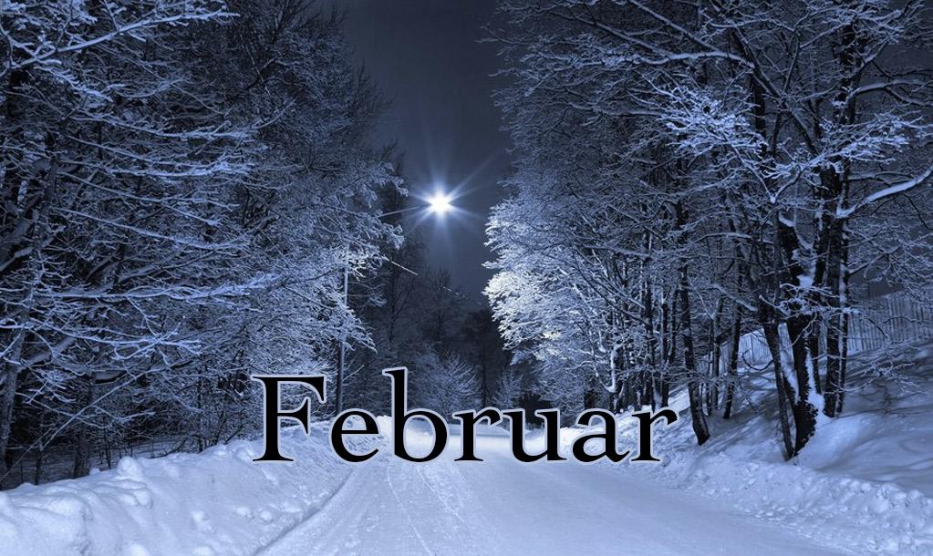 Mesečni horoskop za februar 2015.